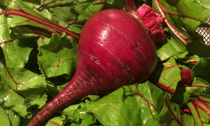 Whole vegetable, tops and all: A macrobiotic beet recipe